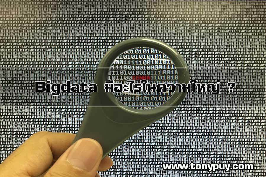Bigdata-มีอะไรในความใหญ่