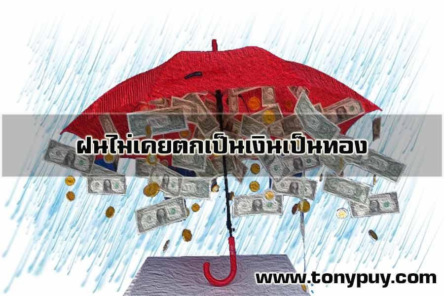 ฝนไม่เคยตกเป็นเงินเป็นทอง